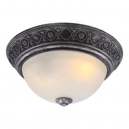 Купить Потолочный светильник Arte Lamp Piatti A8009PL-2SB Arte Lamp