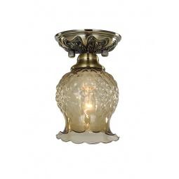 фото Потолочный светильник Favourite Parma 1386-1U Favourite