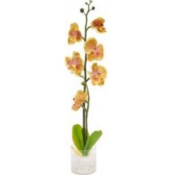 """Купить Декоративный светильник """"Орхидея"""",желтые цветы, PL307"""