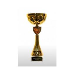 Купить Кубок с индивидуальной гравировкой