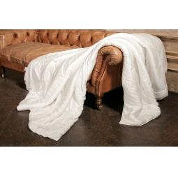 Купить Одеяло Тенсел Double Tencel Grass 200х220 см легкое 96141 Австрия