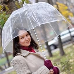 """Купить Прозрачный зонт """"Стеклянный купол"""""""