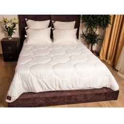 Купить Всесезонное одеяло Тенсел Double Tencel Grass 200х220 см 96140 Австрия