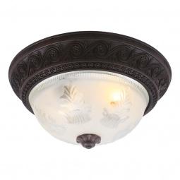 Купить Потолочный светильник Arte Lamp Piatti A8006PL-2CK Arte Lamp