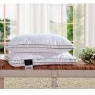 Купить Шелковая подушка Классик 2 70х70 см P1042 мягкая 900 гр On Silk
