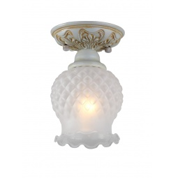 фото Потолочный светильник Favourite Parma 1385-1U Favourite