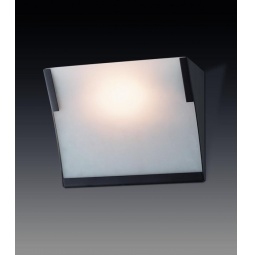 фото Настенный светильник Odeon Anel 2022/1W Odeon