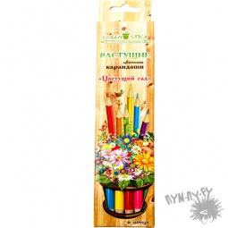 """Купить Растущие карандаши """"Цветущий сад"""" (цветные)"""
