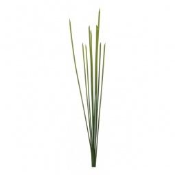 Купить Зелень 'Home-Religion' (105 см) Бамбуковый куст 58002700