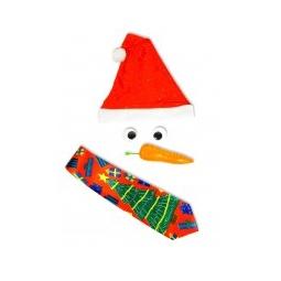 Купить Набор для создания Настоящего Снеговика