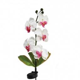 """Купить Светильник на солнечной батарее """"Орхидея розовая с розовым"""", 5 LED белый, PL301"""