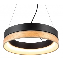 фото Потолочный светильник Favourite Ledino 1358-120P Favourite
