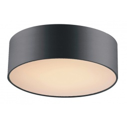 фото Потолочный светильник Favourite Cerchi 1514-2C1 Favourite