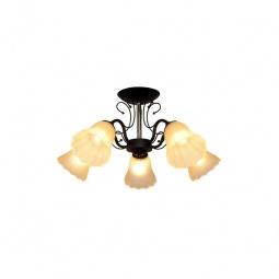 Купить Потолочная люстра IDLamp 872/5PF-Argentoscuro IDLamp