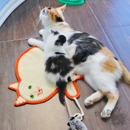 """Купить Подстилка для кота """"Кошки-мышки"""""""